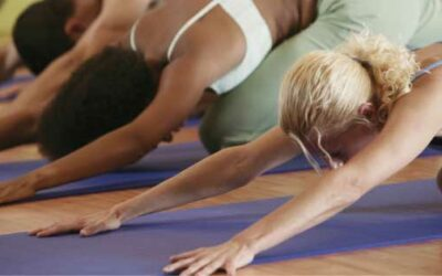 Yoga Workshops at Firefly Wellness Day Spa