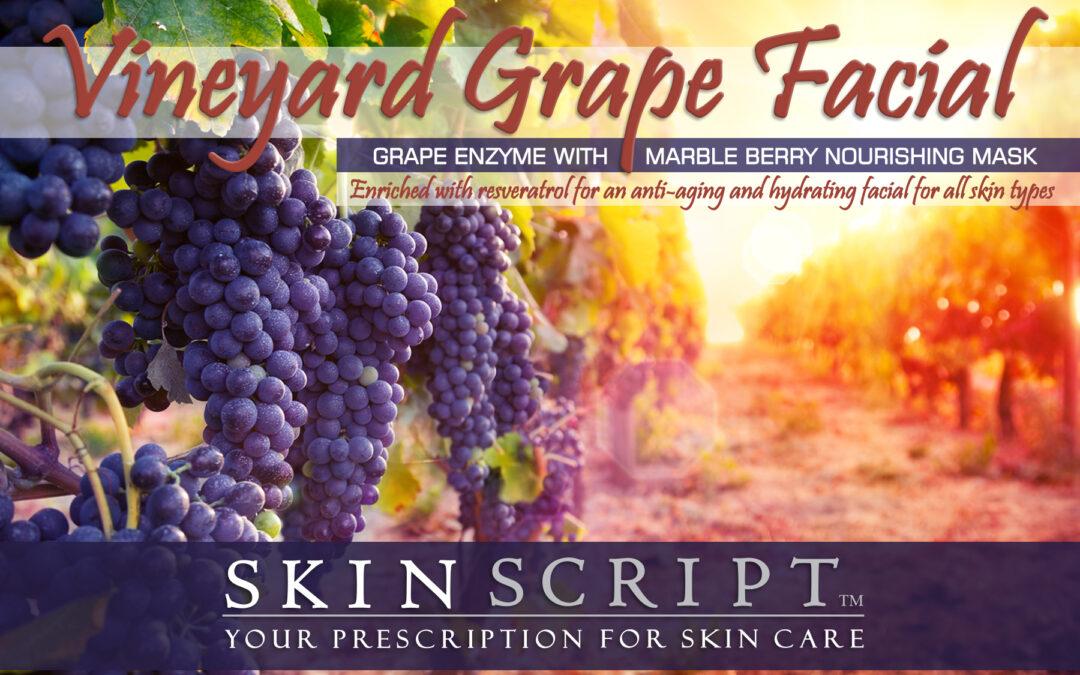 Vineyard Grape Facial from Firefly Wellness
